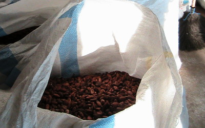Zuccarello-finechocolate - viaggio alla ricerca del cioccolato (13)