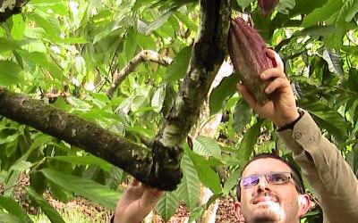 Zuccarello-finechocolate - viaggio alla ricerca del cioccolato (7)