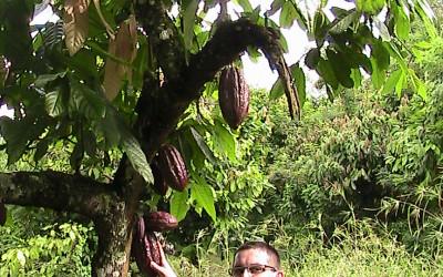 Zuccarello-finechocolate - viaggio alla ricerca del cioccolato (9)